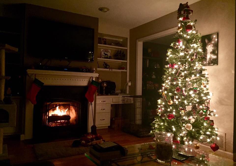 Christmas Tree Safety   Sandhills NC